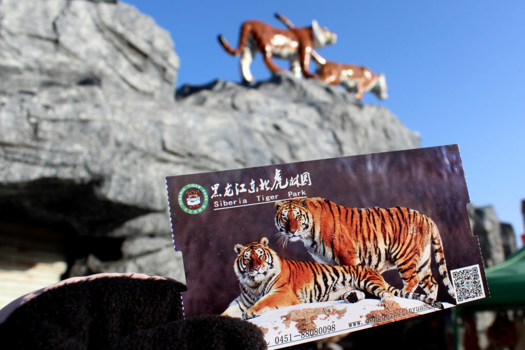 Entry ticket to Harbin's Siberian Tiger Park